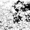 葉6種サムネ