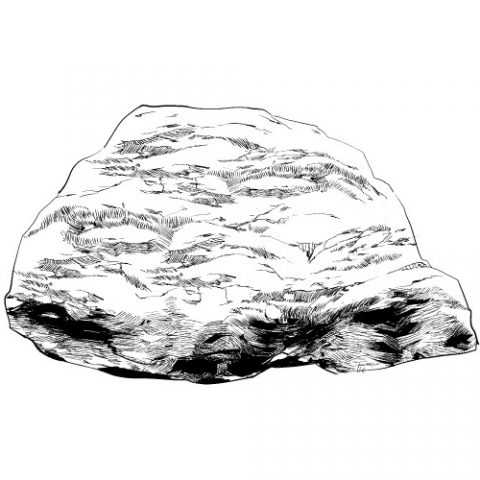 岩山単一サムネ