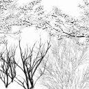 枝ブラシ白黒サムネ