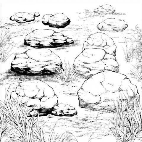 小岩白黒サムネ