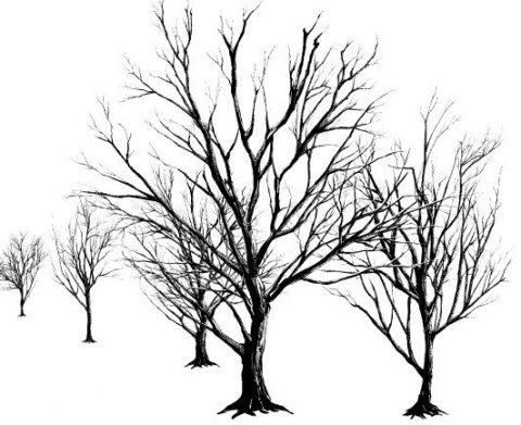 _thumbnail-dead-tree-black