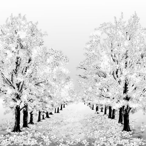 イチョウ樹木サムネ